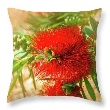Bottlebrush Bloom Throw Pillow