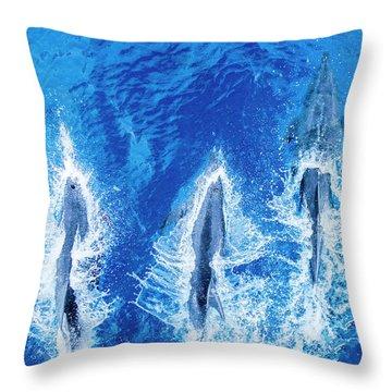 Baja California Peninsula Throw Pillows