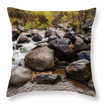 Boulders In Creek Throw Pillow