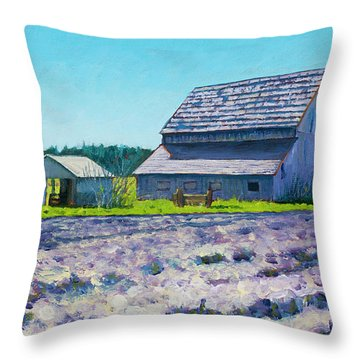 Boyer Barn Throw Pillow