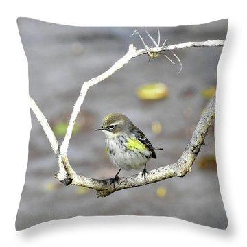Branch Framed Yellow-rumped Warbler Throw Pillow