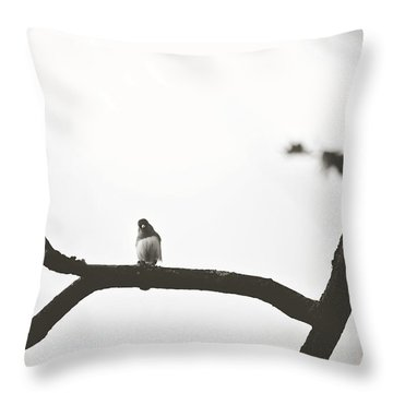 Throw Pillow featuring the photograph Branching Out by Sue Collura