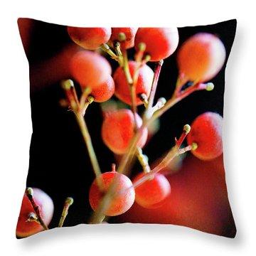 Brazilian Pepper 0423 Throw Pillow