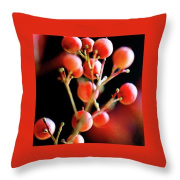Throw Pillow featuring the photograph Brazilian Pepper 0423 by Mark Shoolery