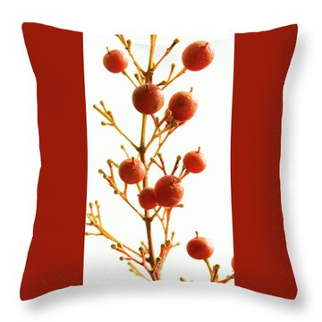 Throw Pillow featuring the photograph Brazilian Pepper 0482 by Mark Shoolery