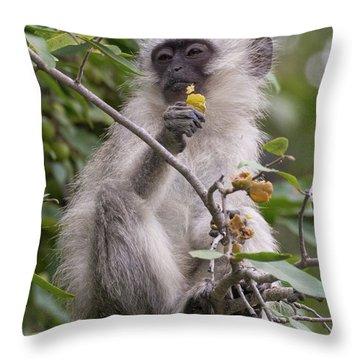 Breakfasting Monkey Throw Pillow