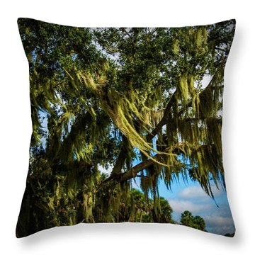 Breezy Florida Day Throw Pillow