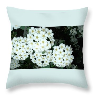 Throw Pillow featuring the photograph Bridal Wreath1 by Belinda Landtroop