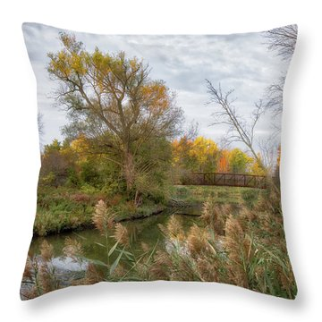 Throw Pillow featuring the photograph Bridge Over Ellicott Creek by Guy Whiteley