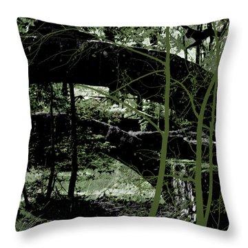 Bridge Vi Throw Pillow