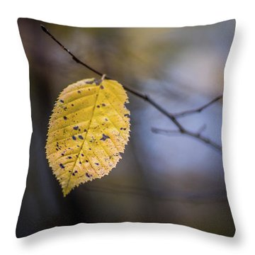 Bright Fall Leaf 1 Throw Pillow