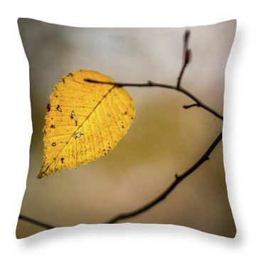 Throw Pillow featuring the photograph Bright Fall Leaf 10 by Michael Arend