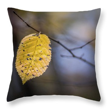 Throw Pillow featuring the photograph Bright Fall Leaf 3 by Michael Arend