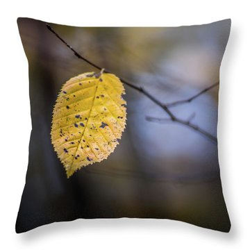 Throw Pillow featuring the photograph Bright Fall Leaf 5 by Michael Arend