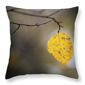 Throw Pillow featuring the photograph Bright Fall Leaf 6 by Michael Arend