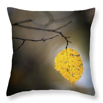 Bright Fall Leaf 7 Throw Pillow