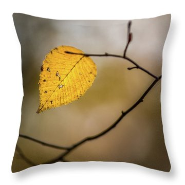 Throw Pillow featuring the photograph Bright Fall Leaf 8 by Michael Arend