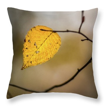 Throw Pillow featuring the photograph Bright Fall Leaf 9 by Michael Arend