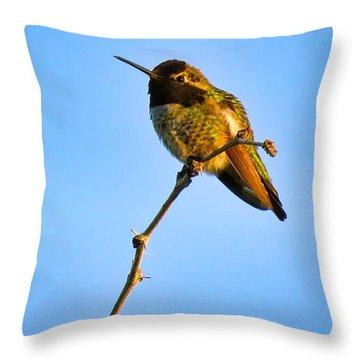 Bright Little Buddy Throw Pillow