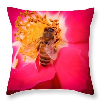 Brilliant Bee Throw Pillow