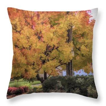 Brilliant Fall Color Tree Yellows Oranges Seasons  Throw Pillow