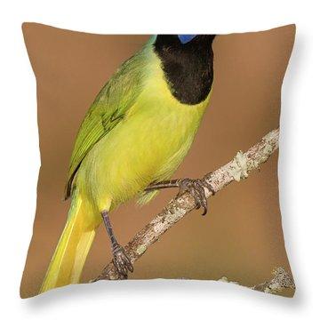 Brilliant Green Jay Throw Pillow