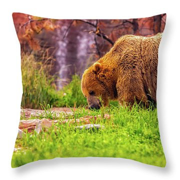 Throw Pillow featuring the photograph Brisk Walk by Dheeraj Mutha