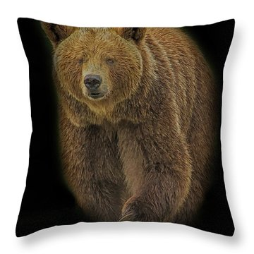 Brown Bear In Darkness Throw Pillow