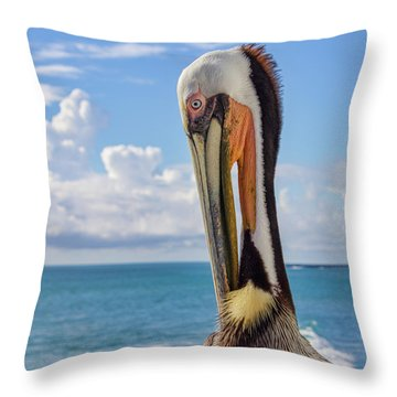 Brown Pelican Portrait Throw Pillow