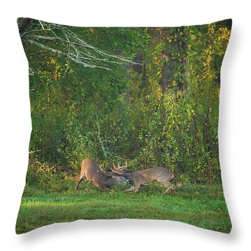 Throw Pillow featuring the photograph Buck Battle by Jeff Phillippi