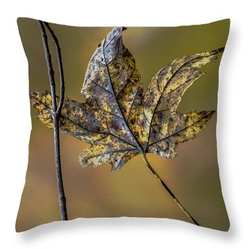 Throw Pillow featuring the photograph Buddies by Michael Arend