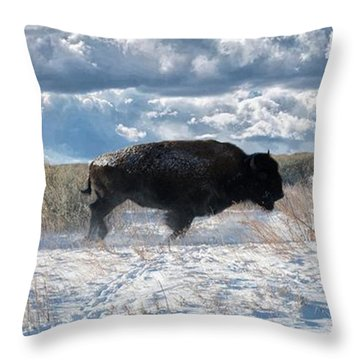 Throw Pillow featuring the photograph Buffalo Charge.  Bison Running, Ground Shaking When They Trampled Through Arsenal Wildlife Refuge by OLena Art Brand