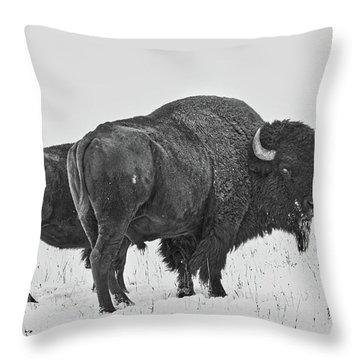 Buffalo In The Snow Throw Pillow
