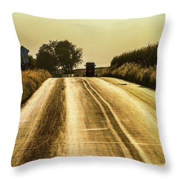 Buggy At Golden Hour Throw Pillow