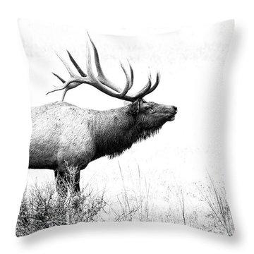 Bull Elk In Rut Throw Pillow