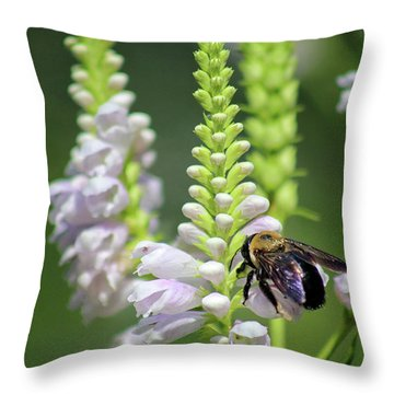 Bumblebee On Obedient Flower Throw Pillow