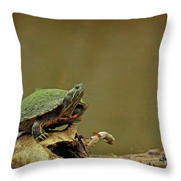 Bump On A Log Throw Pillow