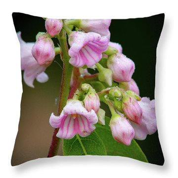 Bunch Of Dogbane Throw Pillow