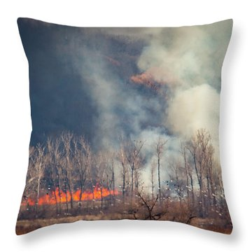Throw Pillow featuring the photograph Burning Squaw Creek by Jeff Phillippi