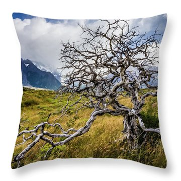 Burnt Tree, Torres Del Paine, Chile Throw Pillow