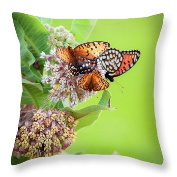 Throw Pillow featuring the photograph Butterfly Buffet II by Jeff Phillippi