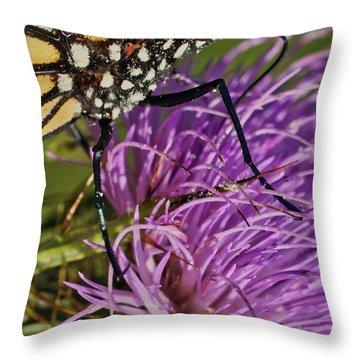Butterfly Closeup Vertical Throw Pillow
