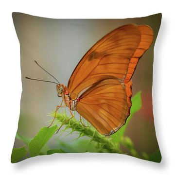 Butterfly, Delicate Wings... Throw Pillow
