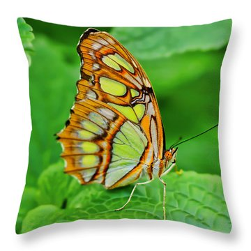 Butterfly Leaf Throw Pillow