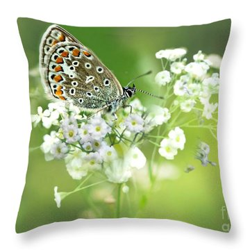 Butterfly On Babybreath Throw Pillow