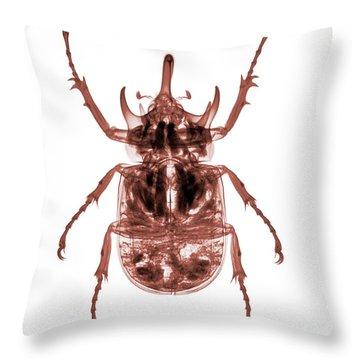 C025/8522 Throw Pillow