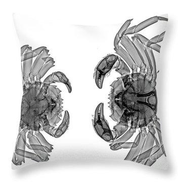 C026/6422 Throw Pillow