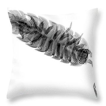 C026/7526 Throw Pillow