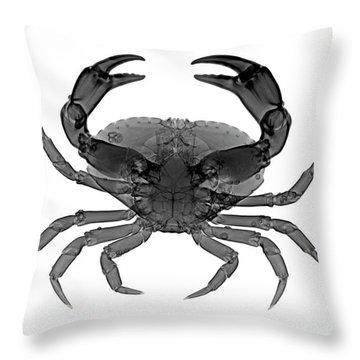 C033/7468 Throw Pillow
