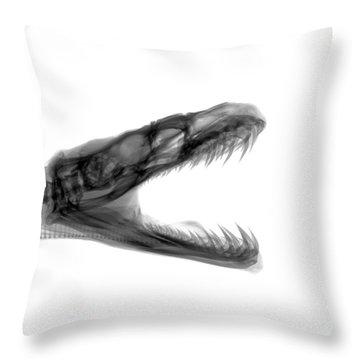 C033/7492 Throw Pillow